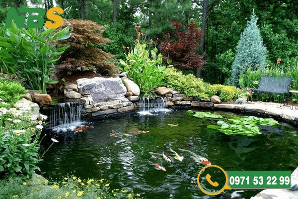 Mẫu hồ cá Koi cho thiết kế sân vườn đẹp