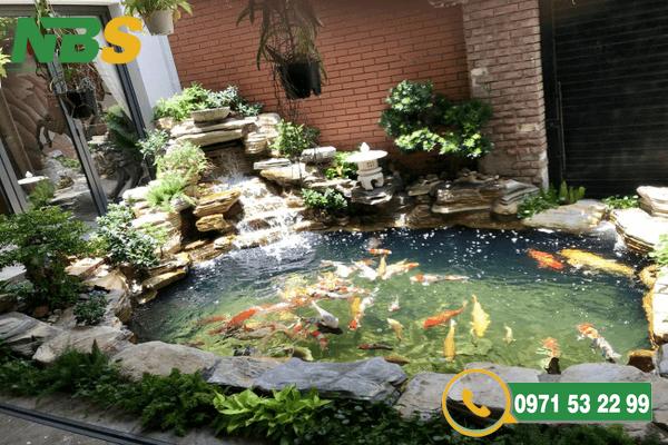 Mẫu thiết kế sân vườn kết hợp hồ cái Koi bền đẹp tại NBS
