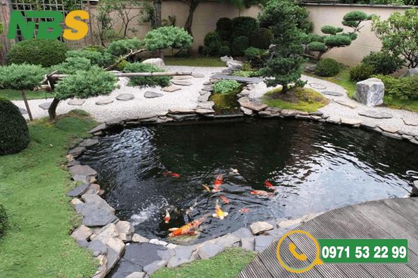 Thiết kế sân vườn kết hợp hồ cá Koi độc đáo