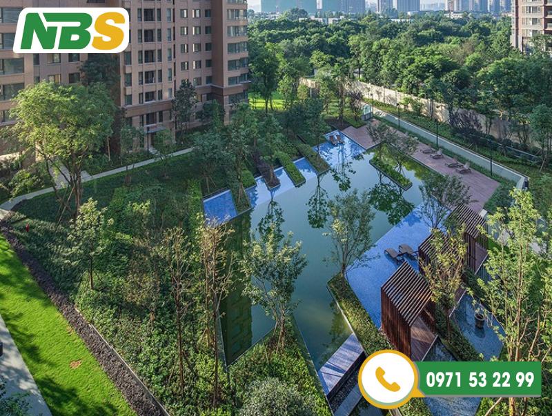 Thiết kế cảnh quan chung cư có hồ bơi được rất nhiều cư dân yêu thích