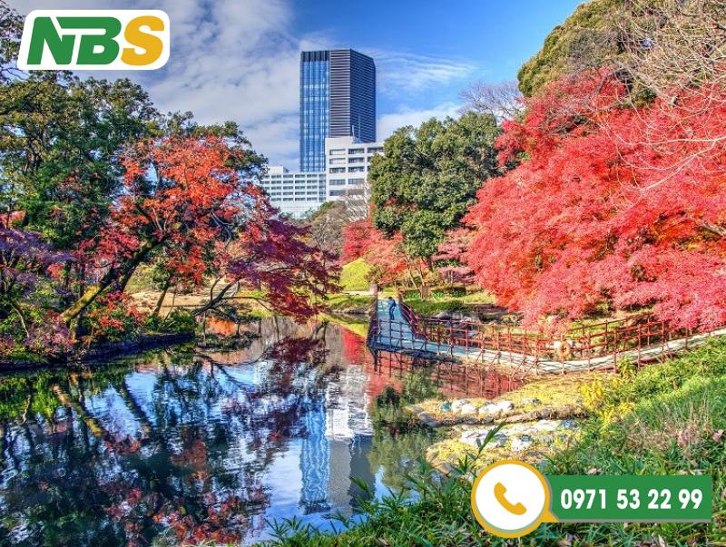 Thiết kế cảnh quan công viên cây xanh Koishikawa Korakuen Garden, Tokyo, Nhật Bản