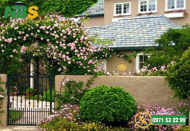Thiết kế sân vườn nhỏ có giàn hoa