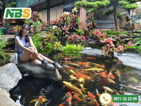 """Hồ Koi quán cafe đang dần trở thành một trong những địa điểm """"hút khách"""" của vài năm gần đây"""