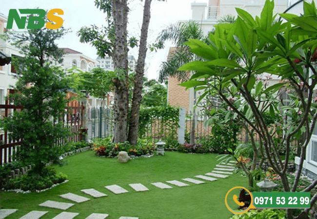 Thiết kế thi công cảnh quan kết hợp trồng nhiều cây xanh