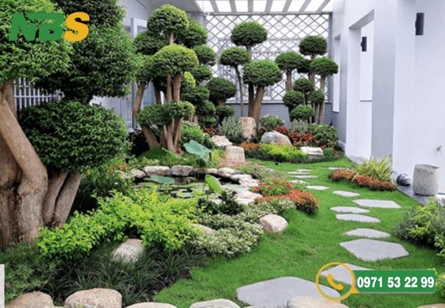 Thiết kế thi công cảnh quan sân vườn với phong cách đa dạng